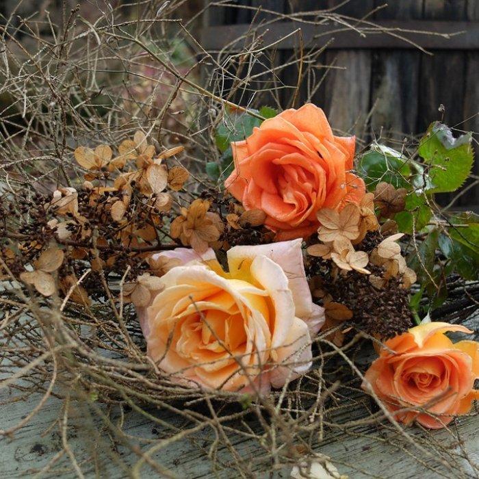 Всё еще розы